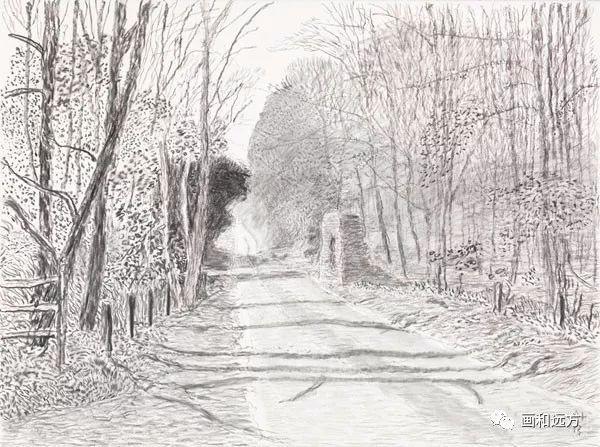 回归素描的美感——大卫·霍克尼素描风景作品插图39
