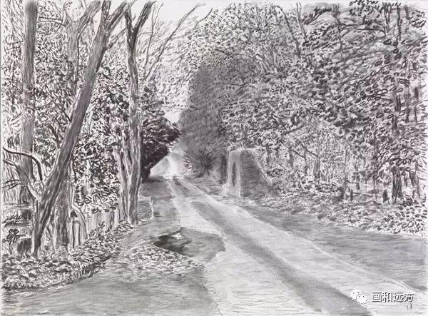 回归素描的美感——大卫·霍克尼素描风景作品插图41
