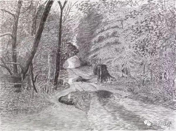 回归素描的美感——大卫·霍克尼素描风景作品插图43