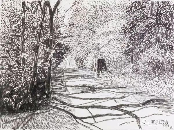 回归素描的美感——大卫·霍克尼素描风景作品插图45
