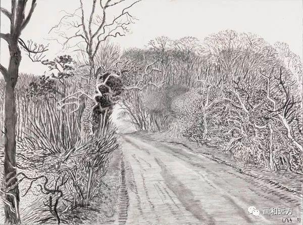 回归素描的美感——大卫·霍克尼素描风景作品插图47