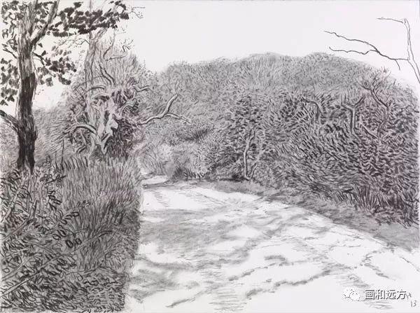回归素描的美感——大卫·霍克尼素描风景作品插图49