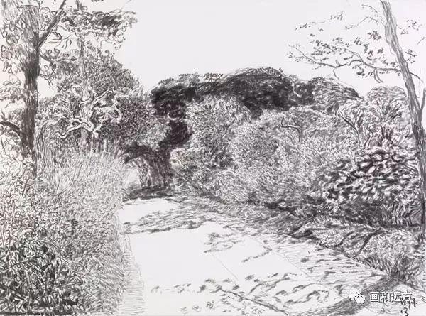 回归素描的美感——大卫·霍克尼素描风景作品插图51