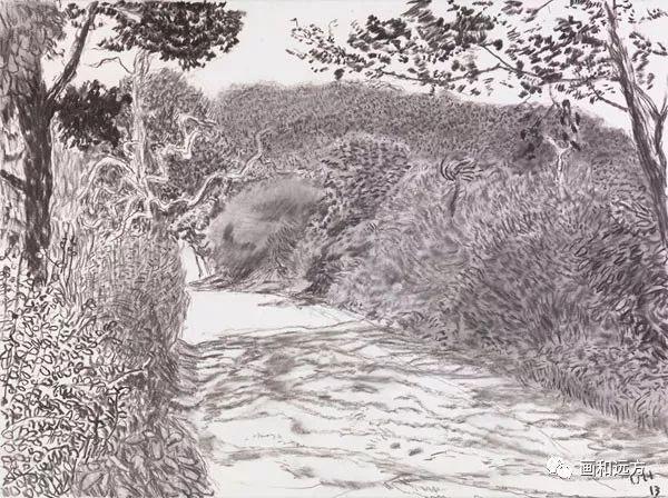 回归素描的美感——大卫·霍克尼素描风景作品插图53