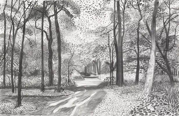 回归素描的美感——大卫·霍克尼素描风景作品插图57