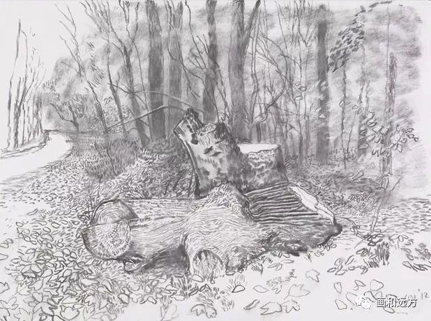 回归素描的美感——大卫·霍克尼素描风景作品插图61
