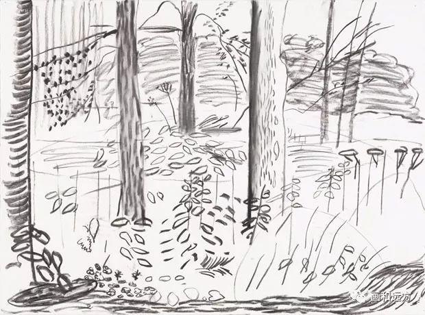 回归素描的美感——大卫·霍克尼素描风景作品插图81