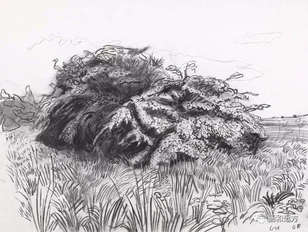 回归素描的美感——大卫·霍克尼素描风景作品插图83