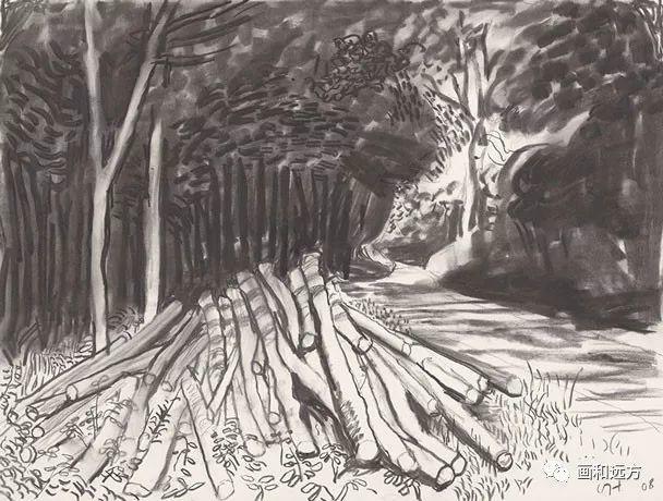 回归素描的美感——大卫·霍克尼素描风景作品插图87