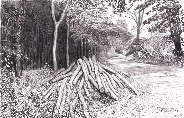 回归素描的美感——大卫·霍克尼素描风景作品插图93