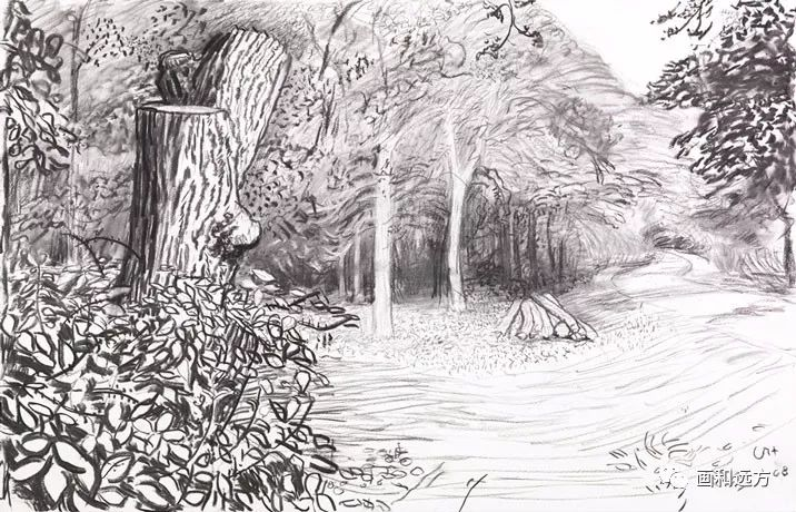 回归素描的美感——大卫·霍克尼素描风景作品插图95