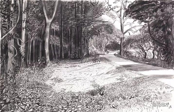 回归素描的美感——大卫·霍克尼素描风景作品插图99