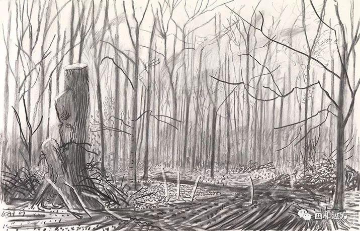 回归素描的美感——大卫·霍克尼素描风景作品插图101