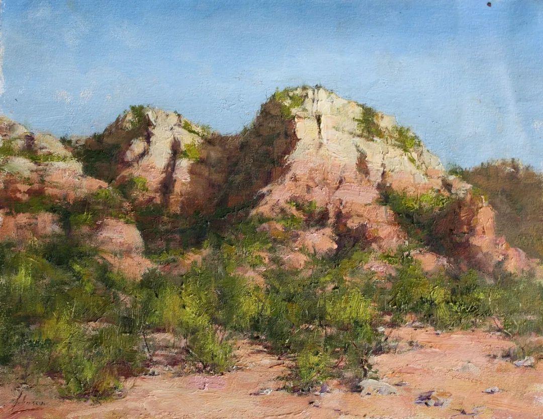 罗伯特·约翰逊笔下精美的风景、花卉油画插图19